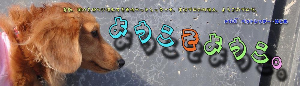 倉敷、岡山の女性ペットシッター士ブログ。|ようこそようこ。