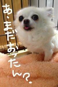 20130127-061701.jpg