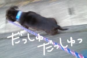 20130210-050150.jpg