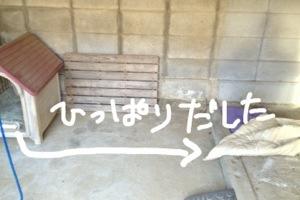 20130215-060940.jpg