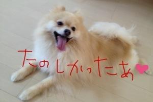 20130709-053552.jpg