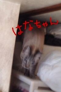 20140127-042051.jpg